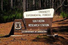 Crossett Experimental Forest